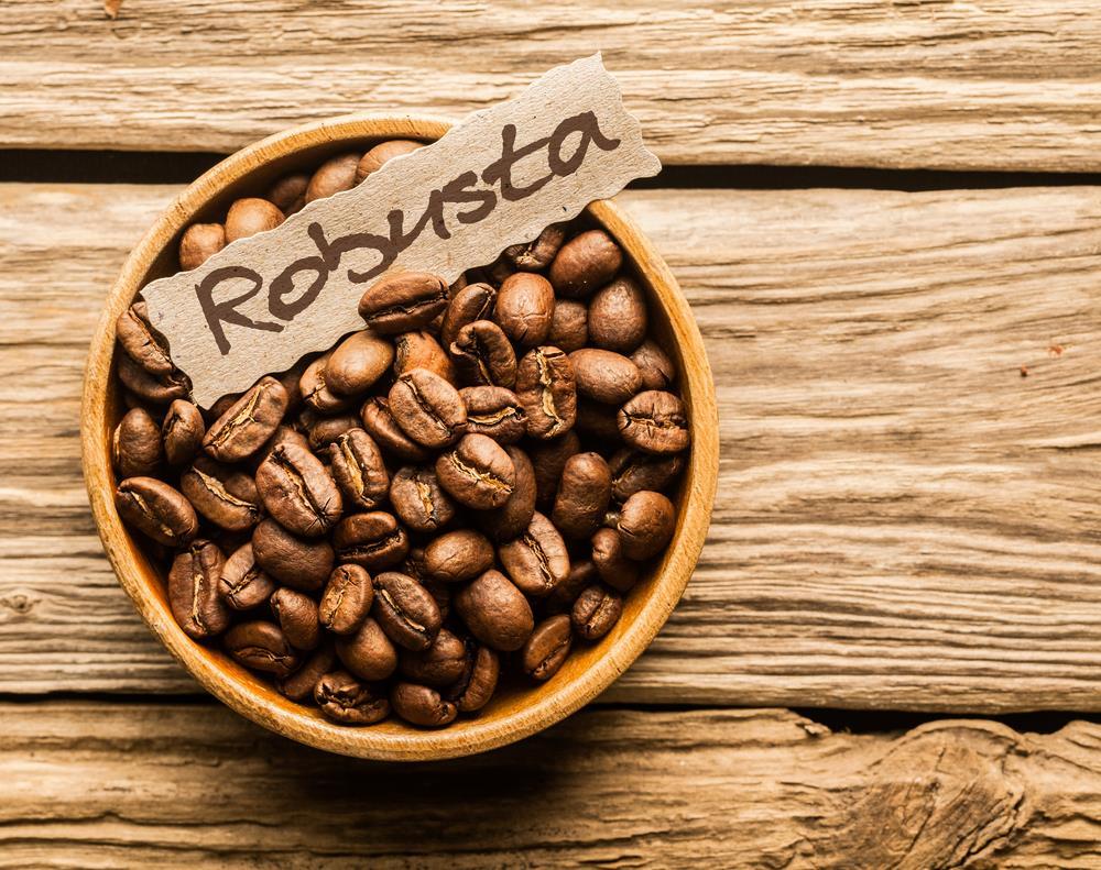 Hình ảnh cà phê Robusta