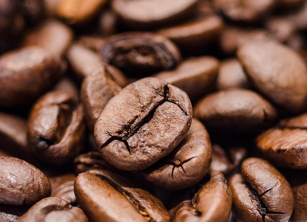 Hình ảnh hạt cà phê Robusta