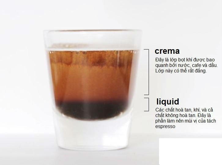 Thành phần của một ly cà phê Espresso